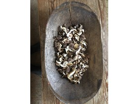 Dried Shiitake Mushrooms (1 oz)