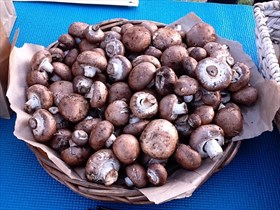 Freshly Picked Crimini Mushrooms (Baby Bellas) (1 lb)
