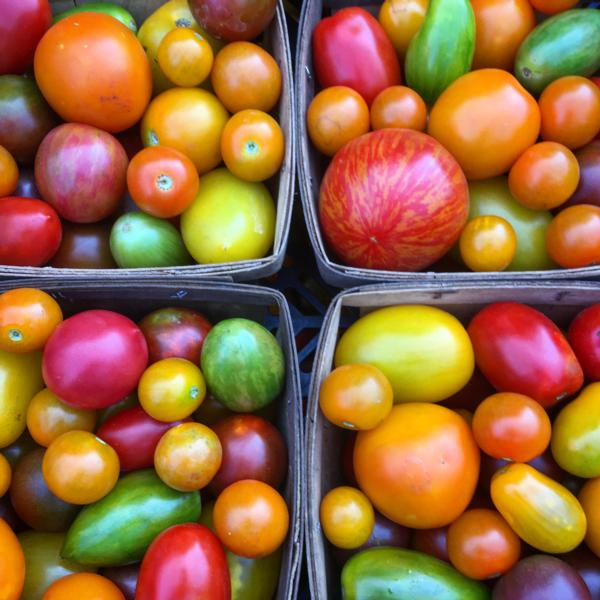 Our world famous mixed tomato box!! a quart of heirloom mixed tomatoes in all the colors of the rainbow