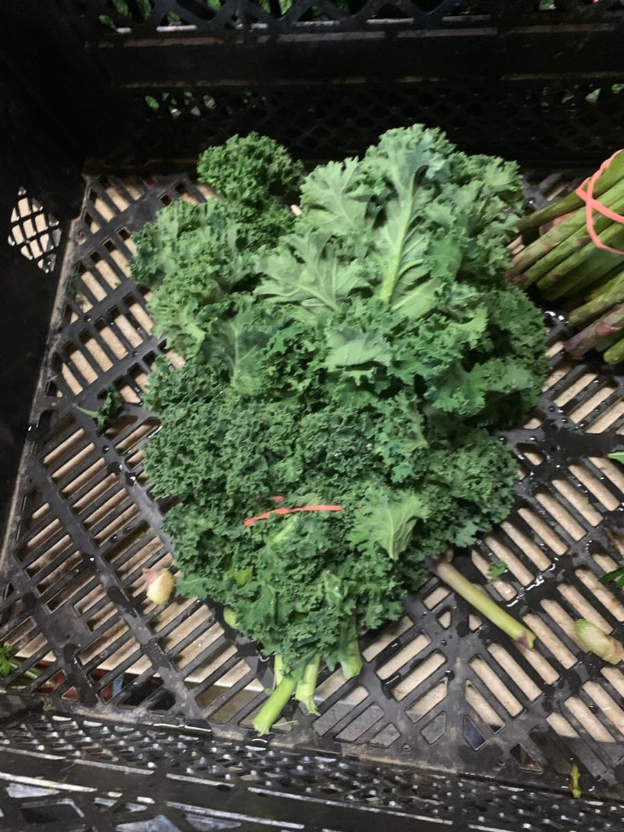Kale (1 bunch)
