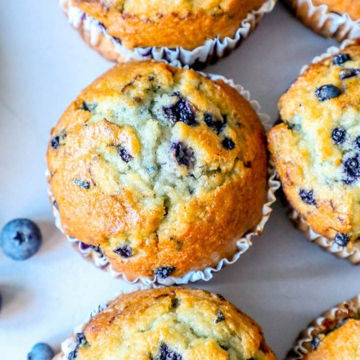 Blueberry Muffin (individual)