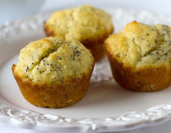 Lemon Poppy Seed Muffin (Individual)